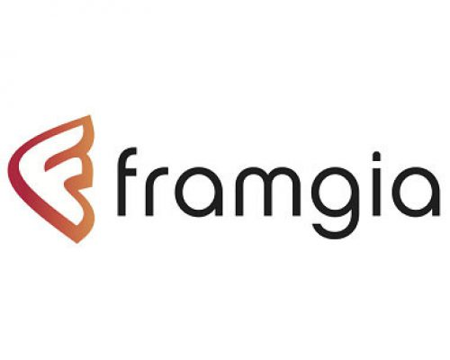 Client Framgia - Lead Generation, The Netherlands